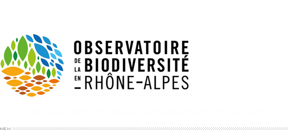 Biodiversity Observatory Logo, Before and After