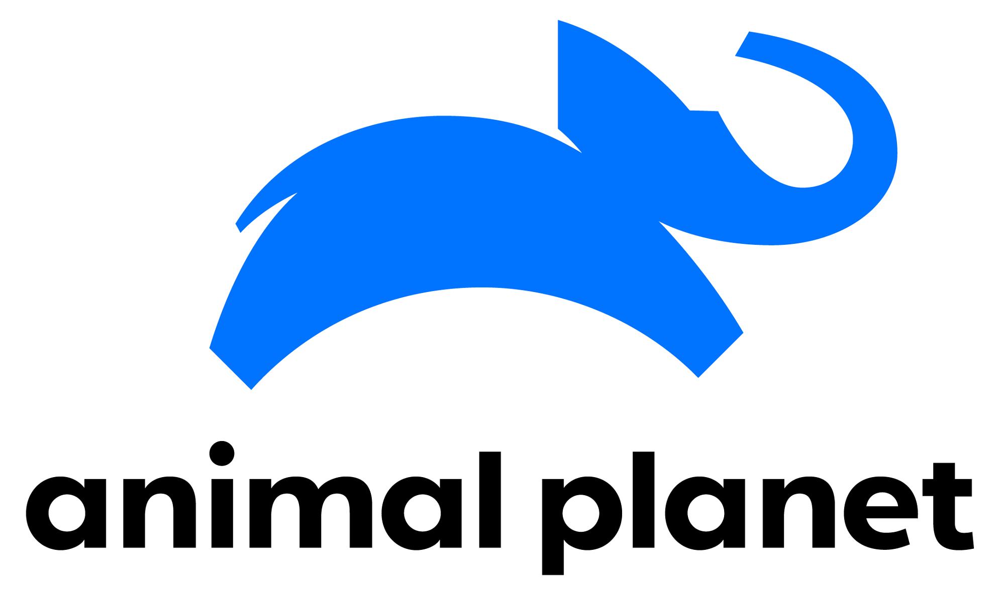 New Logo for Animal Planet by Chermayeff & Geismar & Haviv