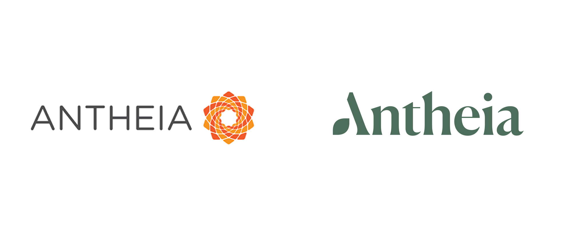 New Logo and Identity for Antheia by Mucho