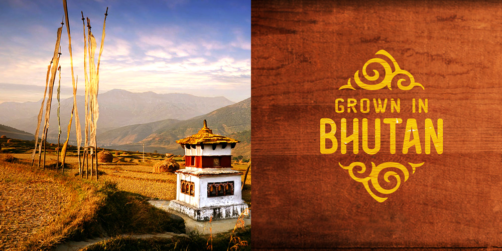 New Logo and Identity for Bhutan by FutureBrand