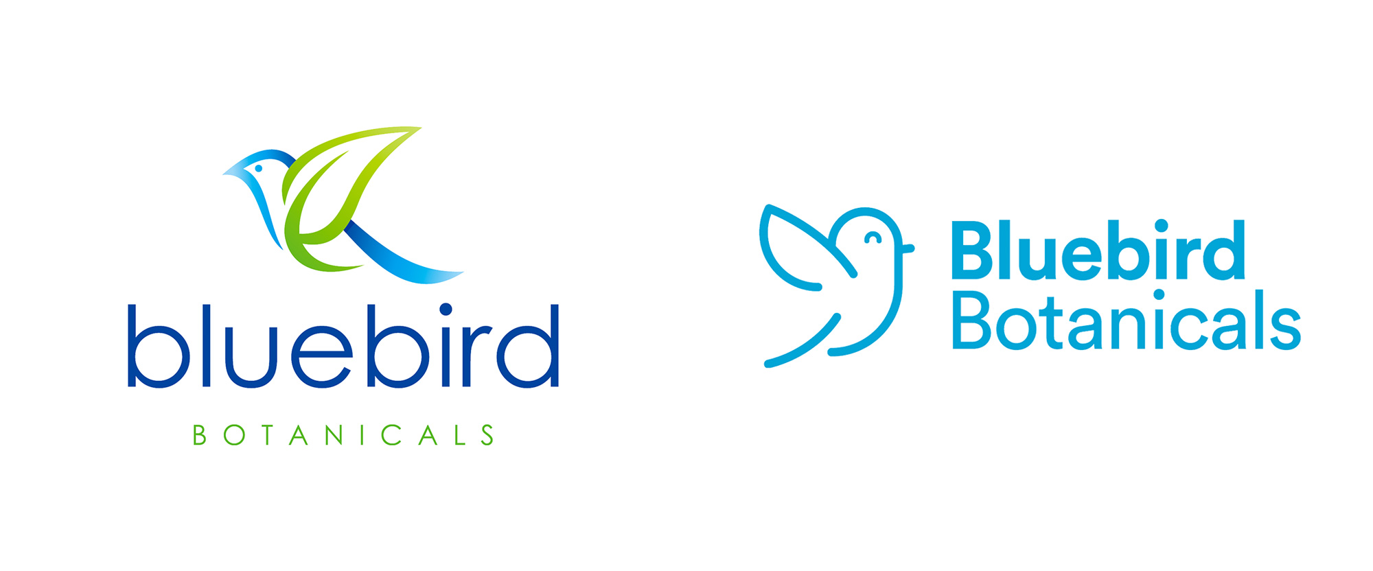 New Logo and Packaging for Bluebird Botanicals by Illustria