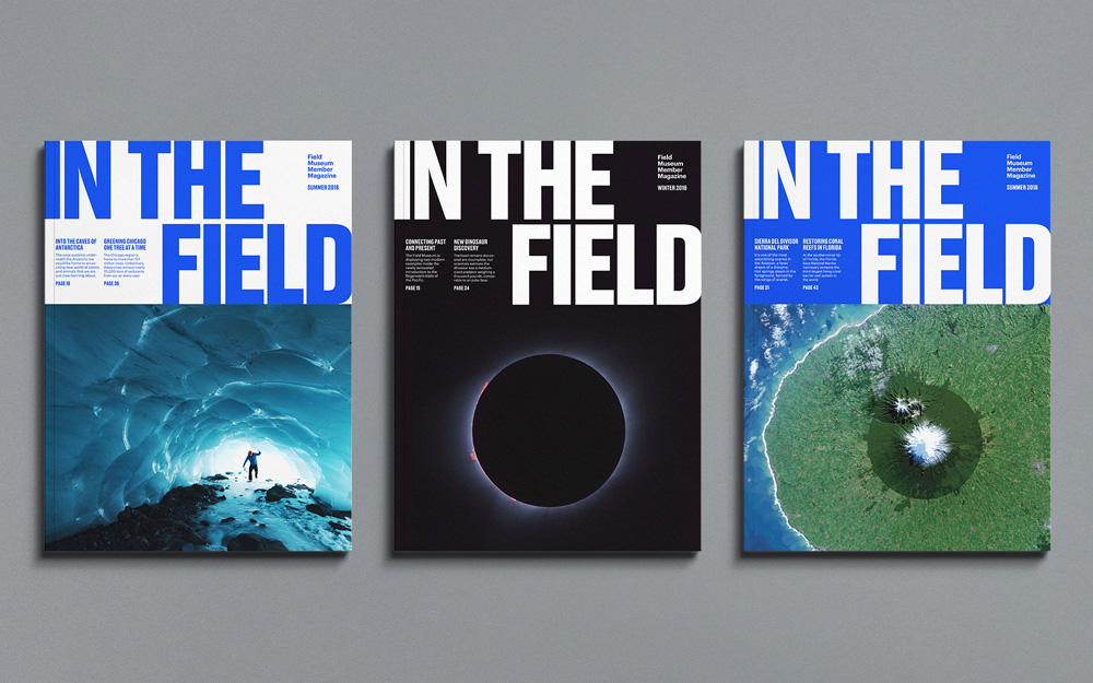 New Logo and Identity for Field Museum by Leo Burnett Department of Design