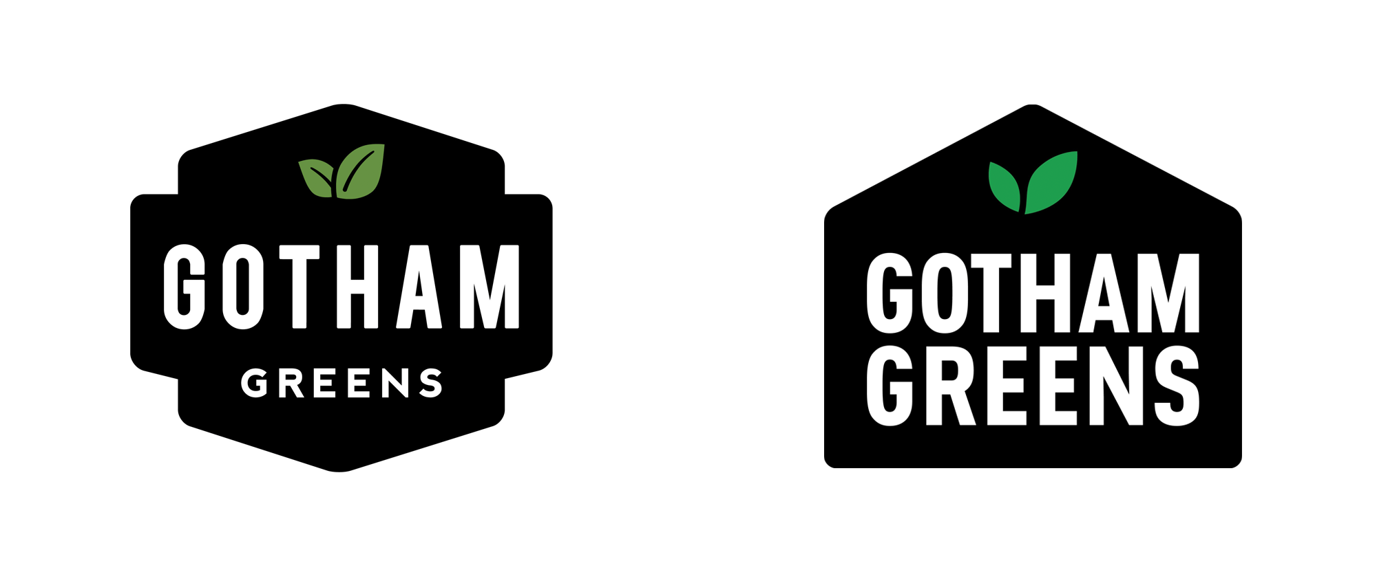 New Logo and Packaging for Gotham Greens