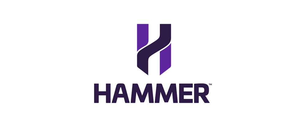 New Name, Logo, and Identity for Hammer Series by Designwerk