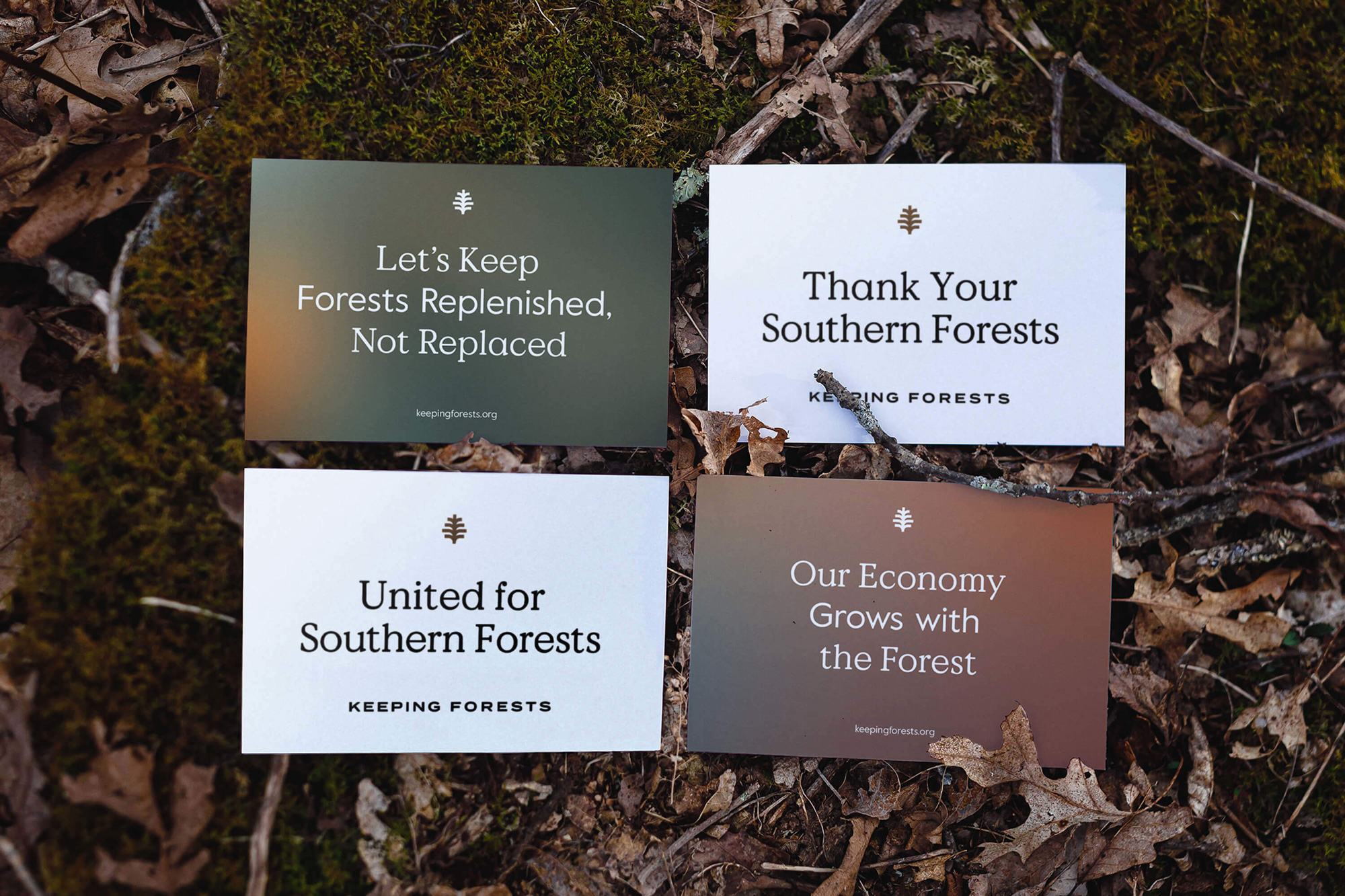 New Logo and Identity for Keeping Forests by Matchstic