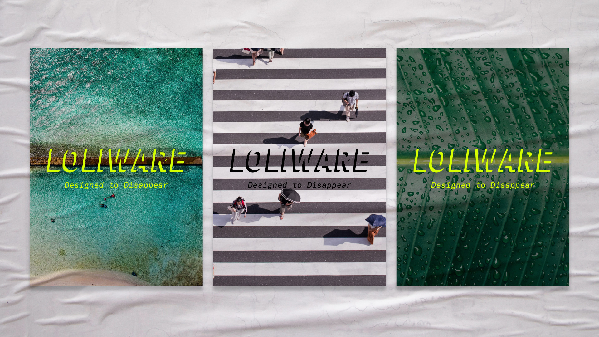 New Logo and Identity for Loliware by Lobster Phone