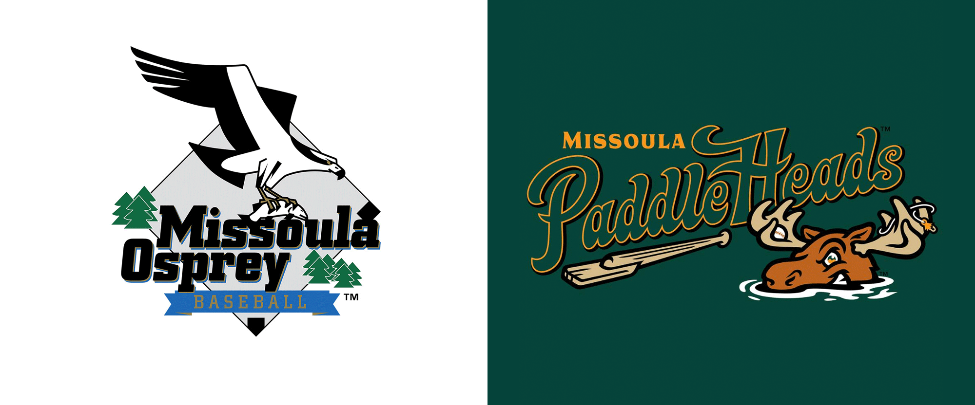 New Logo for Missoula PaddleHeads by Brandiose