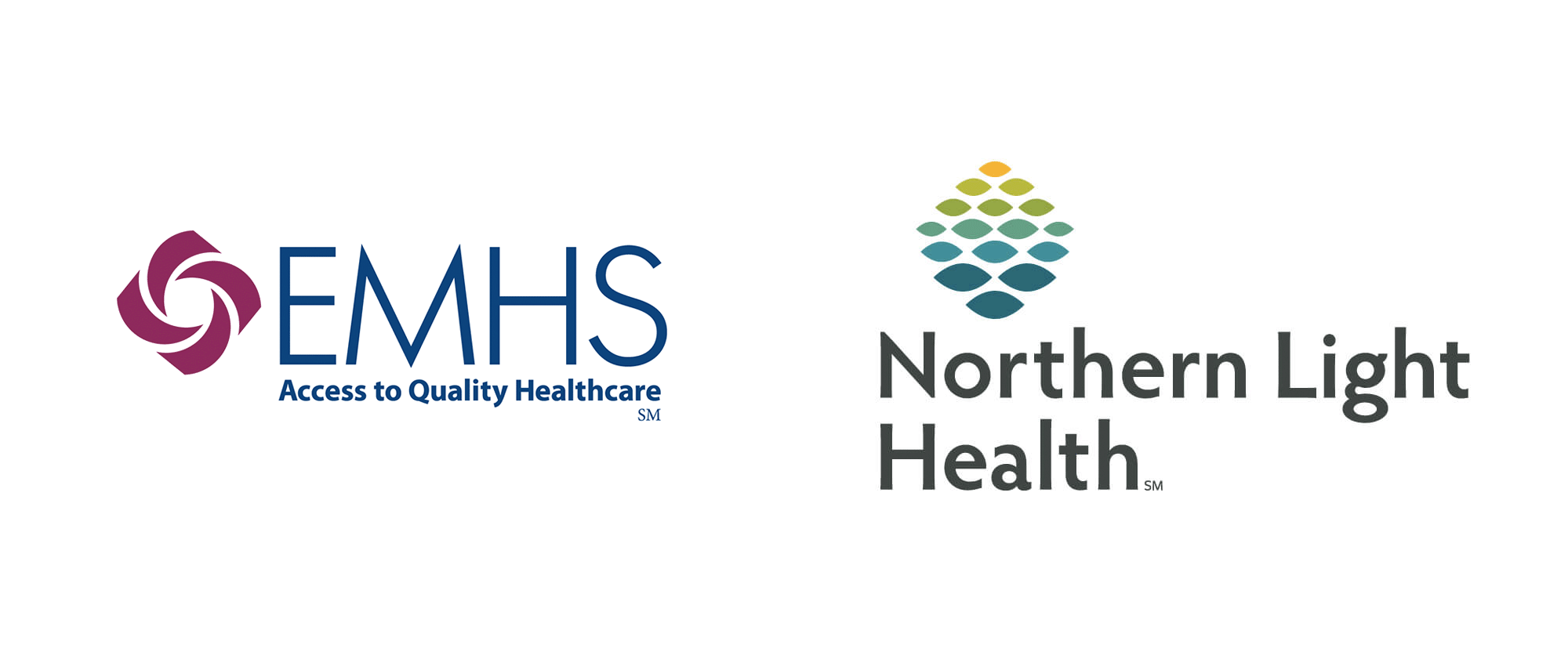 New Name, Logo, and Identity for Northern Light Health by Monigle