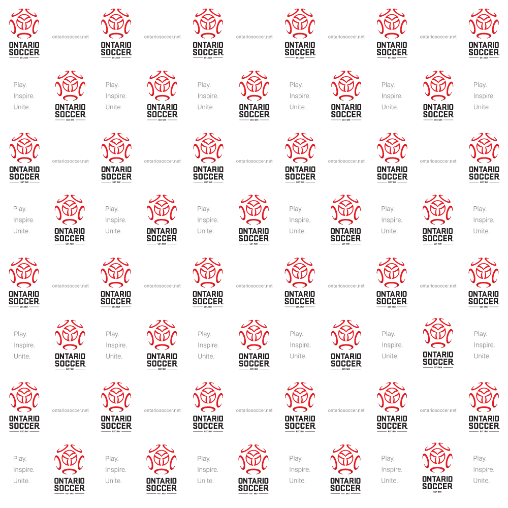 logo and brand identity guidelines template