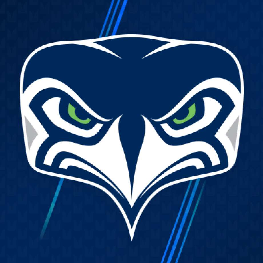 Seahawks Alternate Logo