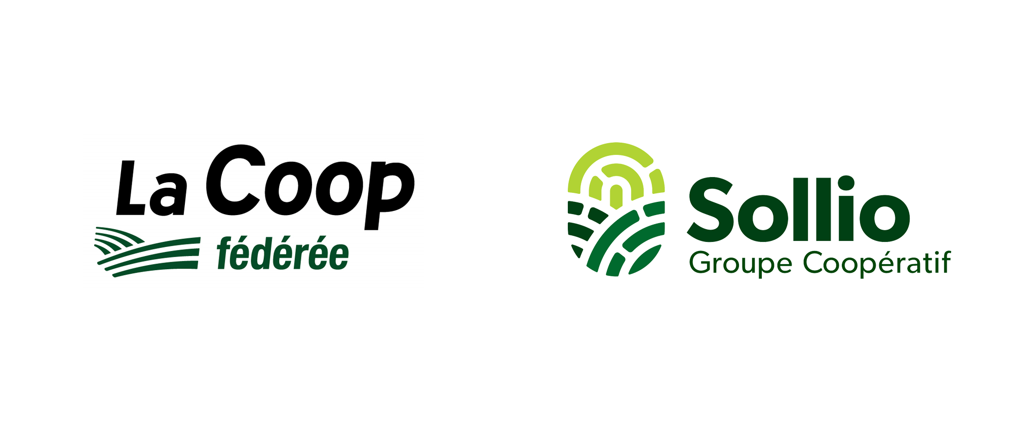 New Name and Logo for Sollio Cooperative Group