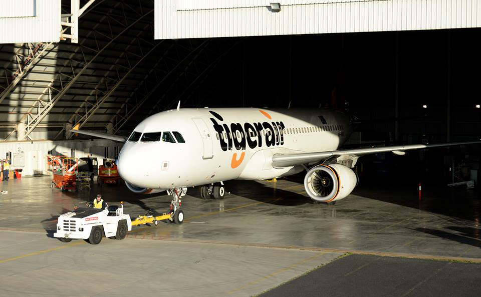 New Logo and Livery for Tigerair by The Secret Little Agency