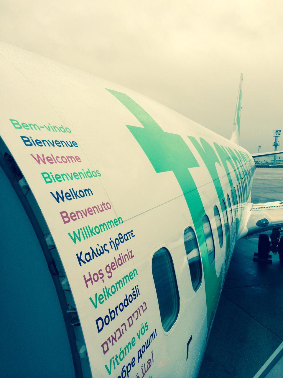 brand new  new logo  identity  and livery for transavia by studio dumbar