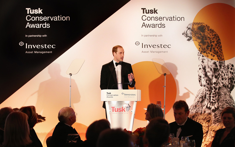 New Logo and Identity for Tusk Conservation Awards by The Partners
