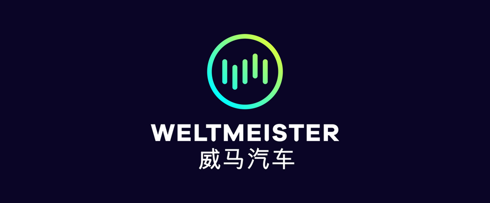 New Logo and Identity for Weltmeister by STRICHPUNKT