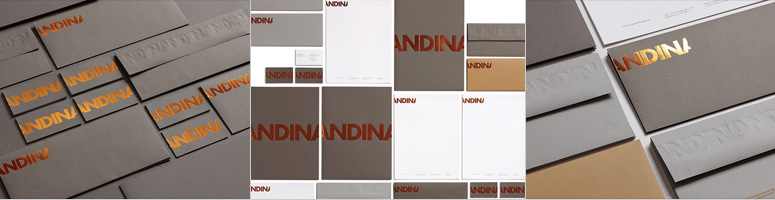 Andina Capital Management Identity