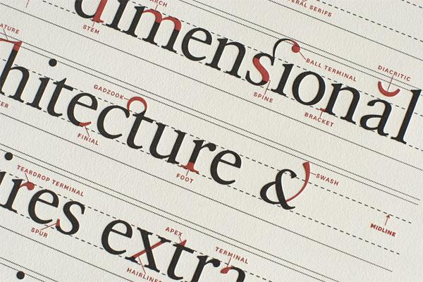 Ligature, Loop & Stem Poster