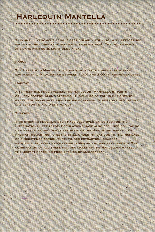 <em />The Red List</em>, An Alphabet Book of Endangered Species