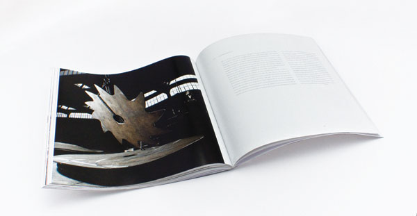 Boldrocchi Centenary Book