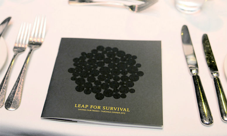 Leap For Survival Event Collateral