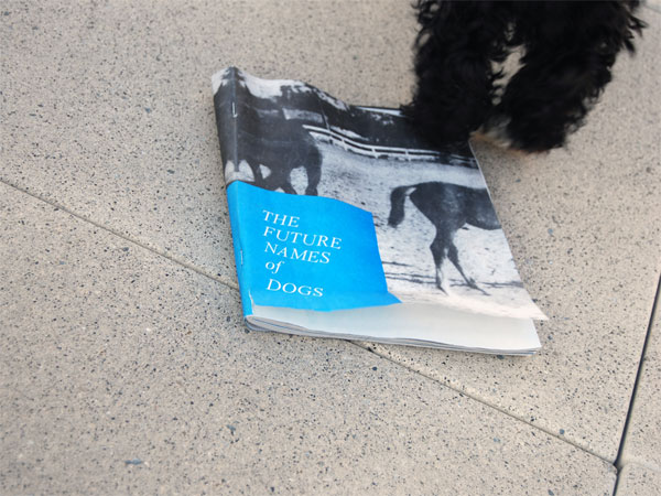 The Future Names of Dogs Zine