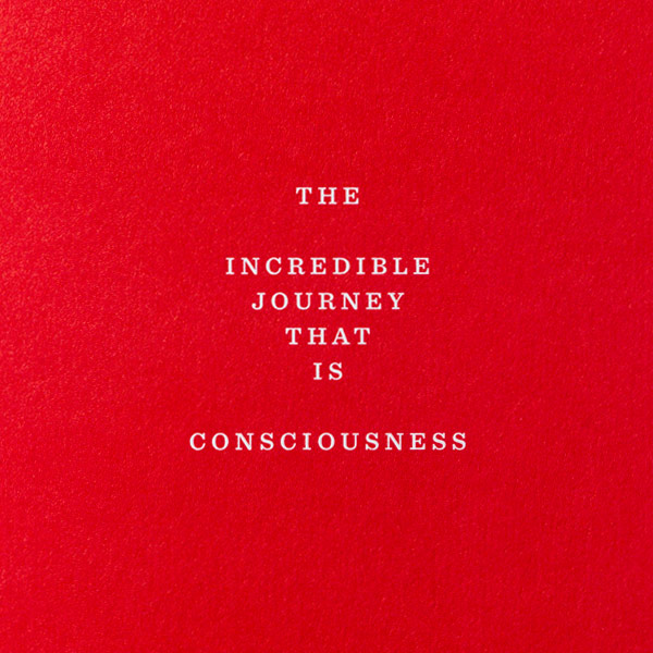The Incredible Journey that is Consciousness