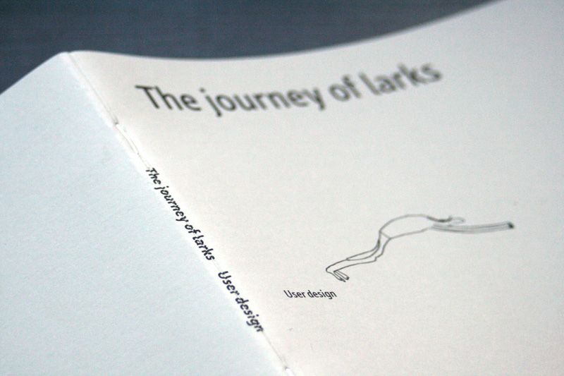 The Journey of Larks