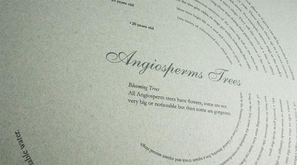 <em />Not Just Fleurons</em> Book