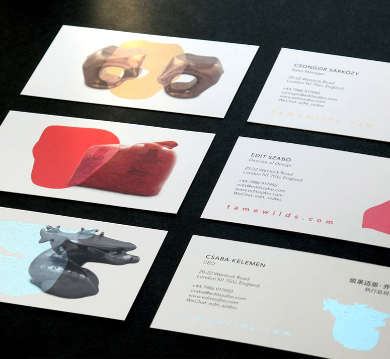 Tame Collection Flyers and Business Cards