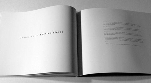 <em />The Light Remains</em> Book