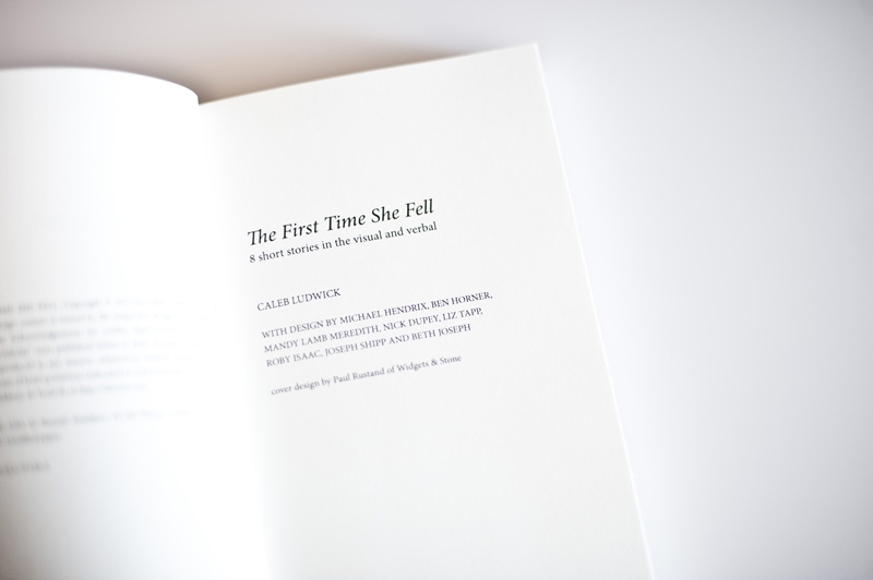 <em>The First Time She Fell</em> Book