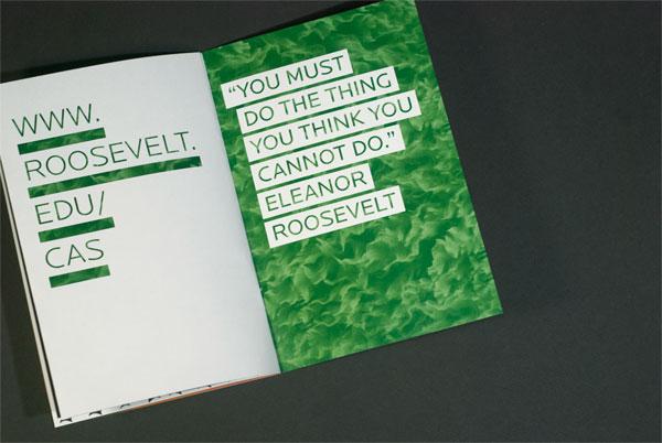 Roosevelt University Un-Viewbooks
